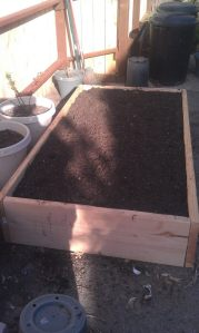 22 raised bed