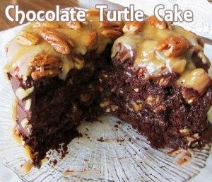 choc turtle cake