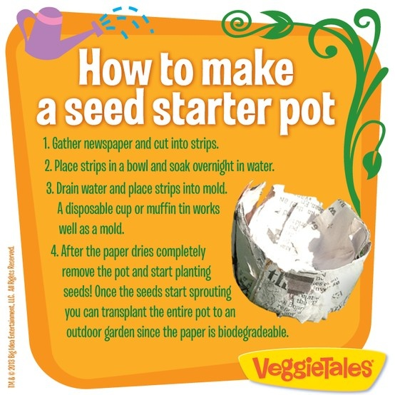 HOW TO MAKE A SEED STARTER POT