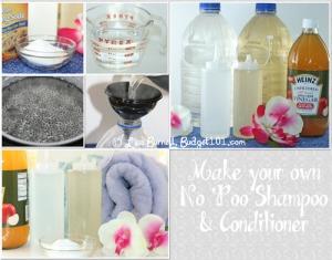 homemade no poo shampoo