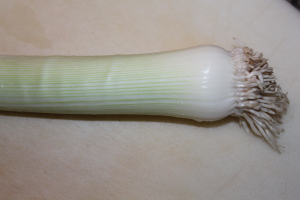 Leeks look a lot like a green onion from the outside.
