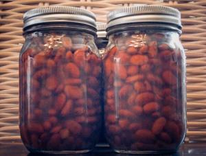 Pinto-beans-2