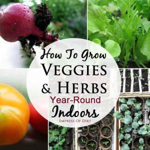 empress of dirt grow veggies indoors