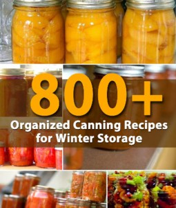 800-Organized-Canning-Recipes