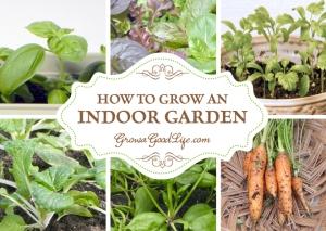 grow-an-indoor-garden-growagoodlife