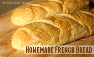 french-bread-recipe