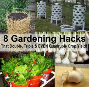 gardening-hacks-600x584