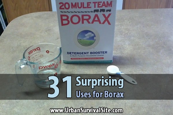 31-surprising-uses-for-borax-wide-2