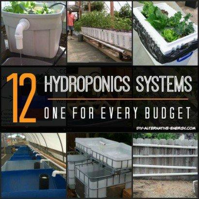 hydroponics_systems_v2-410x410.jpg