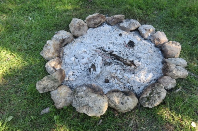wood-ash-2.jpg